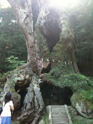 佐賀県・嬉野温泉で日頃の疲れを癒し、自然のパワーも頂いてきた