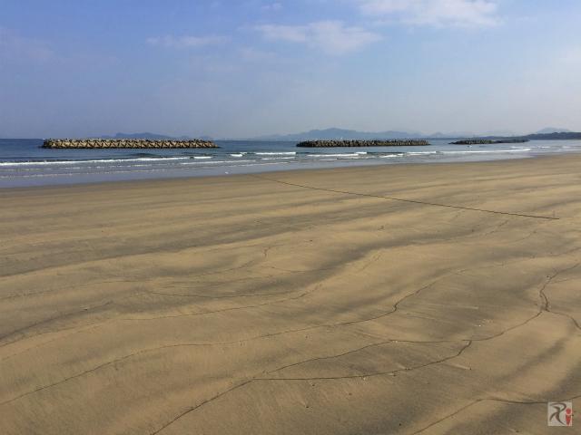 新宮海岸の美しさに魅了され、信号地獄で心を病む【Walk福工大前】