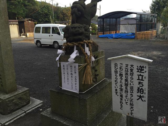 伊豆神社の逆立ち狛犬