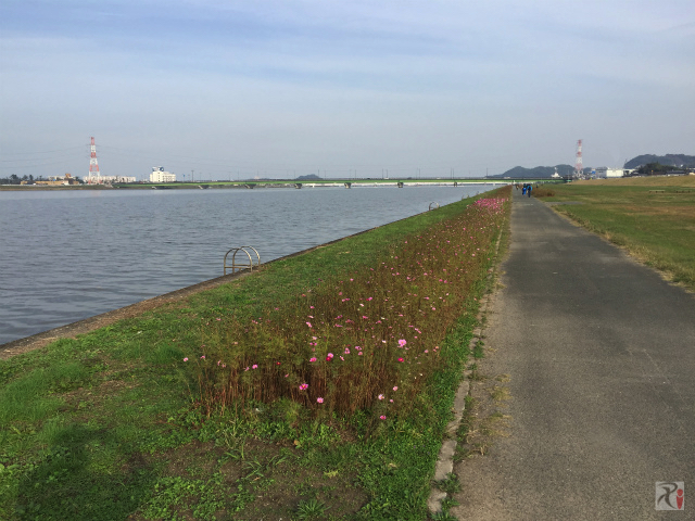 遠賀川河川敷遊歩道