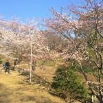 大将陣公園のすべり台が消滅していて驚き悲しむ【Walk桂川】