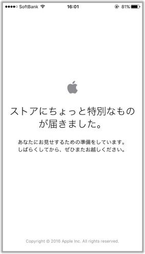 Apple Store予約画面