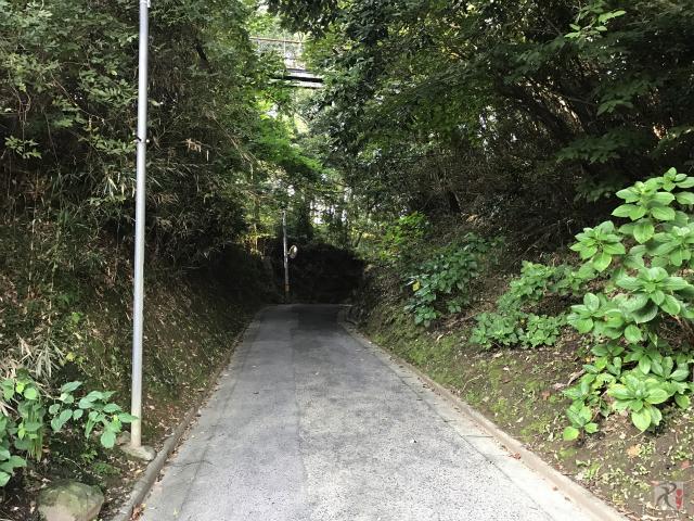 石炭記念館横の山道