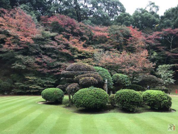 曇天の下、寺社巡りと紅葉見物で秋を感じる【Walk新飯塚】