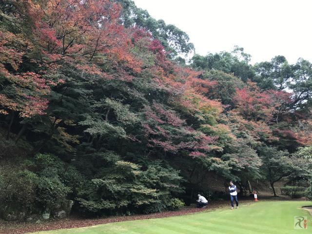 麻生大浦荘庭園