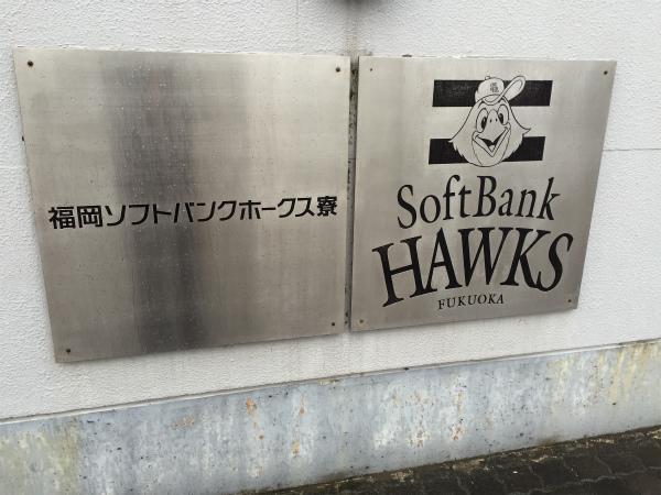 ホークスもアビスパも志賀島も雨にかき消された【Walk西戸崎】