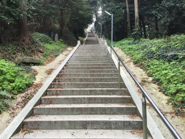 [Я]2015年緒戦は菜の花天国と階段250段地獄【ウォーク古賀編】