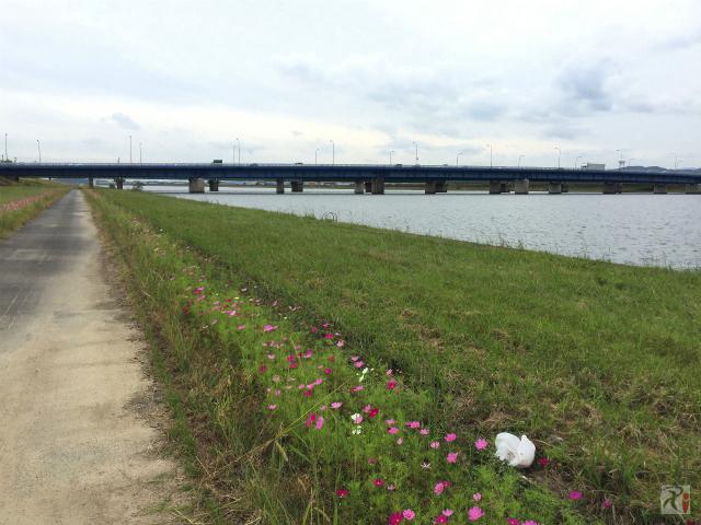 国道3号線の橋
