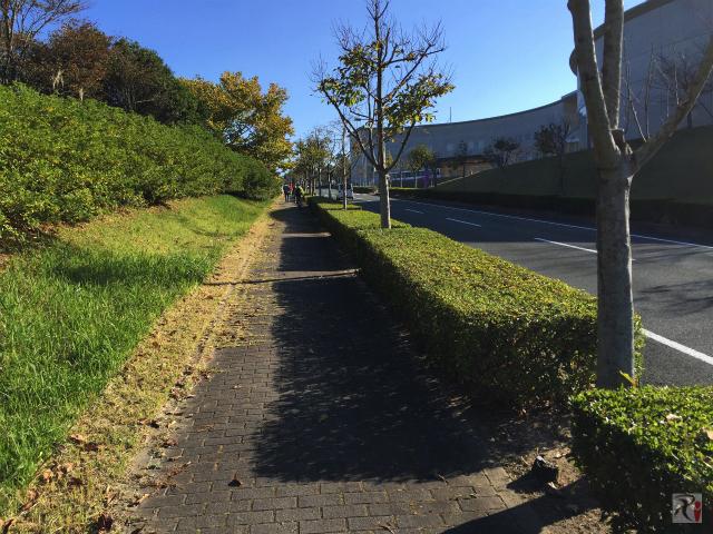 明天寺公園横の坂道