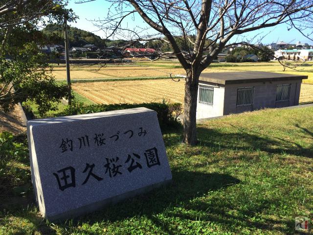 田久桜公園
