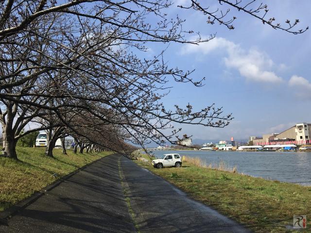 今川河川敷