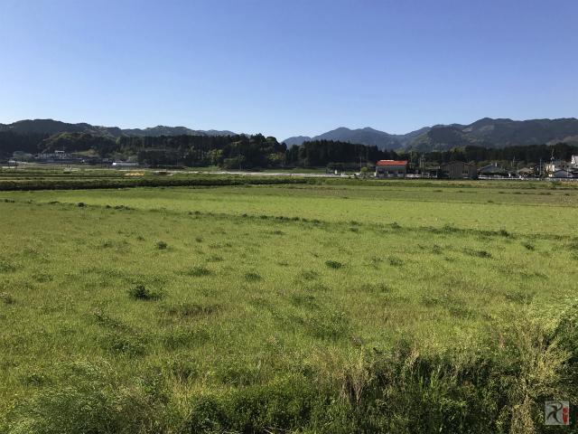 川崎町の田園風景
