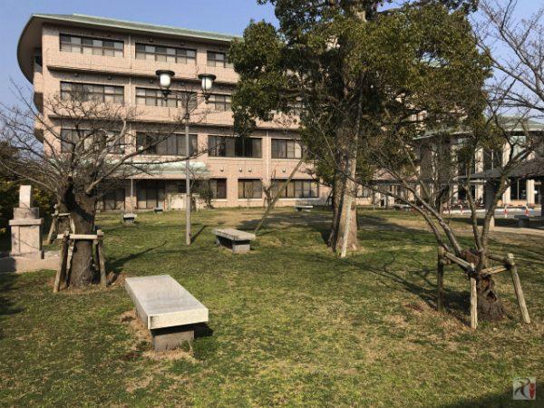 母校の高校跡地を30年ぶりに訪れたら忘れていた記憶が蘇った