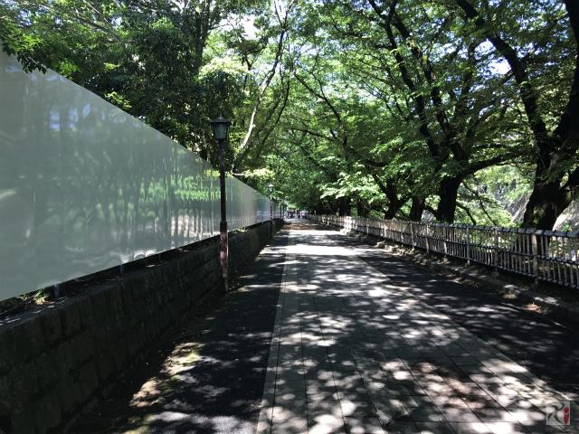 名古屋城正門へと続く道