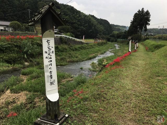 俳句の道復路