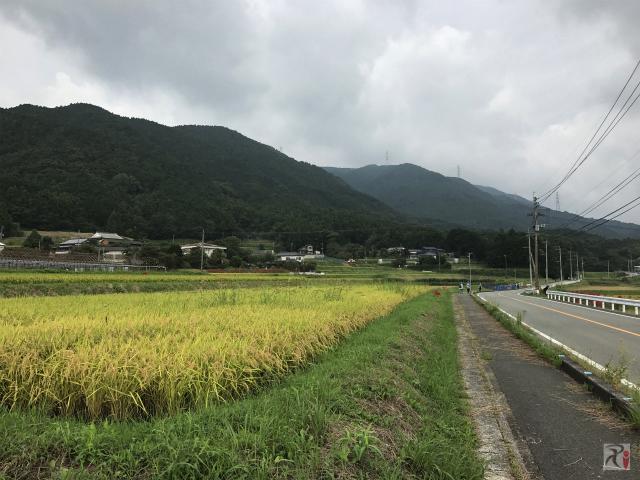 宮若の田園風景