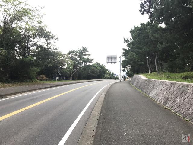 国道495号線
