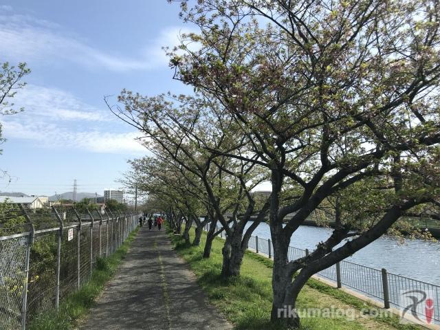 中須公園付近